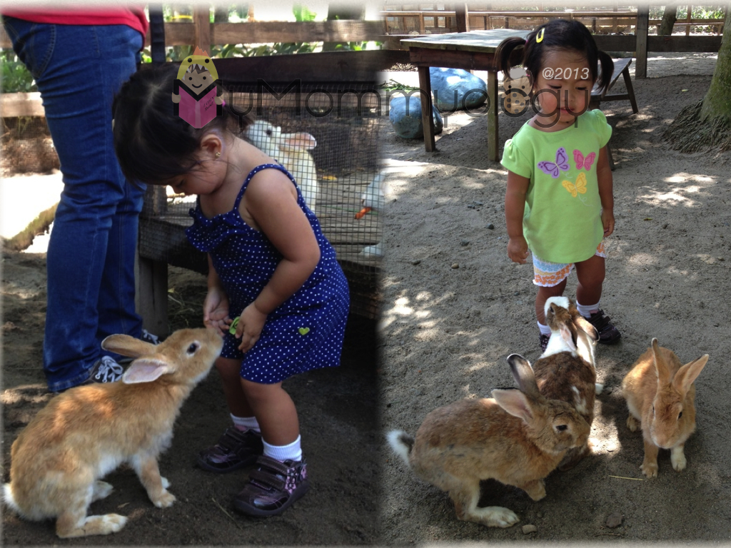 At the Farm, Sta. Elena.  Could the real rabbits smell her love for bunnies?
