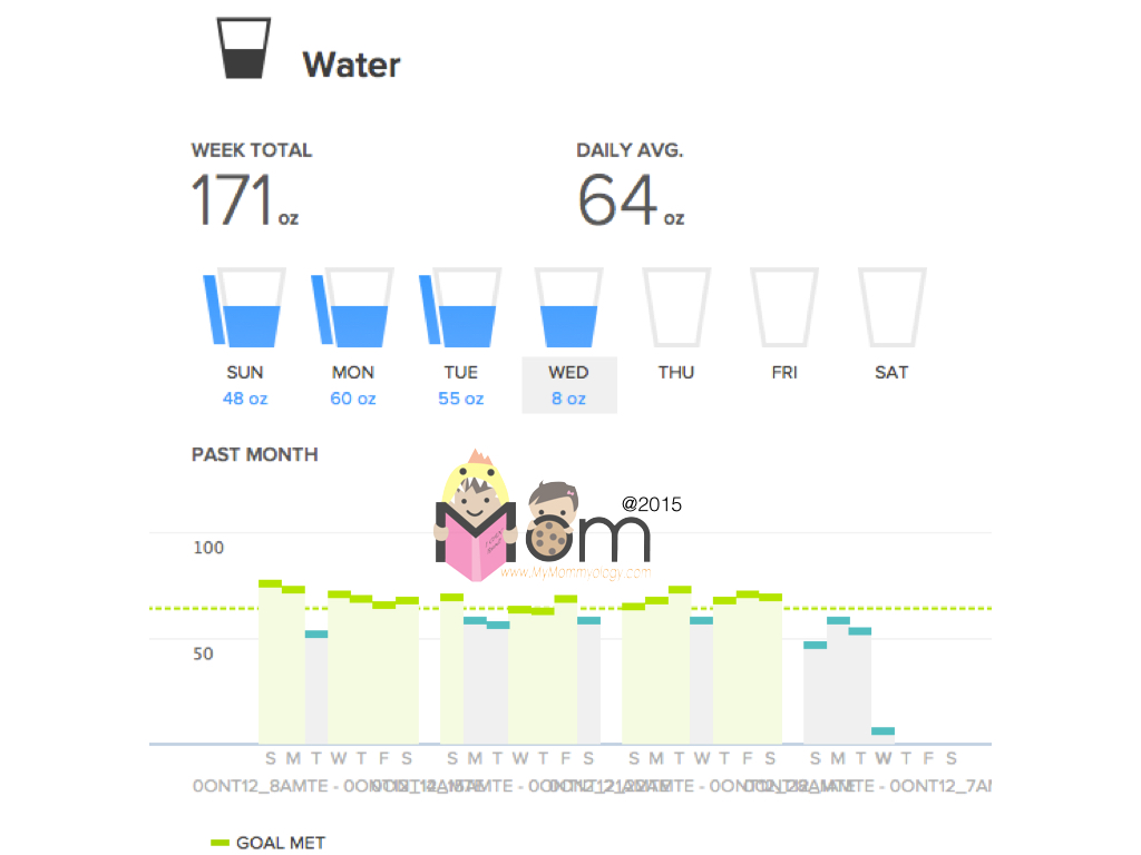The report from my Fitbit Dashboard.